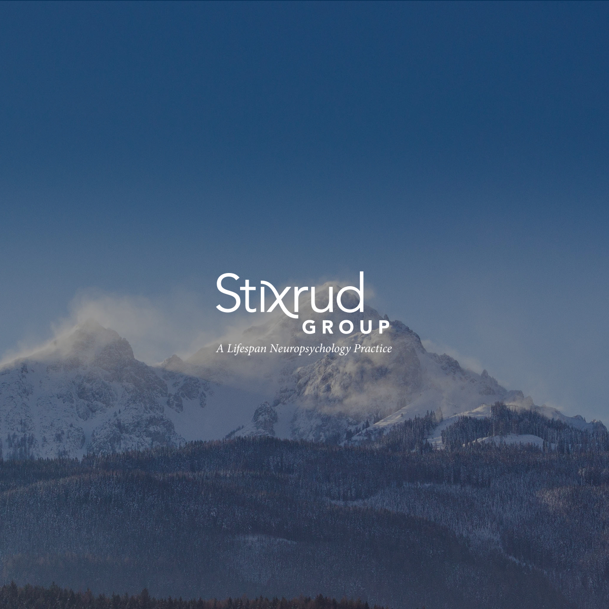 The Stixrud Group